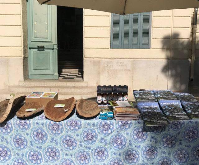 Forêt Modèle de Provence, soutien aux filières du chêne liège et du pistachier lentisque (2)